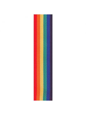 2' POLY-RAINBOW GUITAR STRAP
